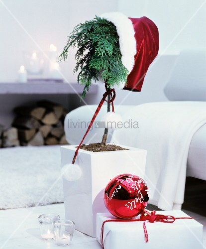Small conifer wearing Father-Christmas hat next to red bauble with white lettering on top of wrapped gift