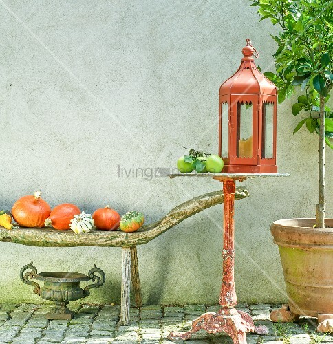 Lantern on bistro table and pumpkins on wooden bench against exterior wall of house