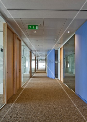 Lavender-blue wall elements in long, inviting hallway with window at the end and light from the side falling through glass offices