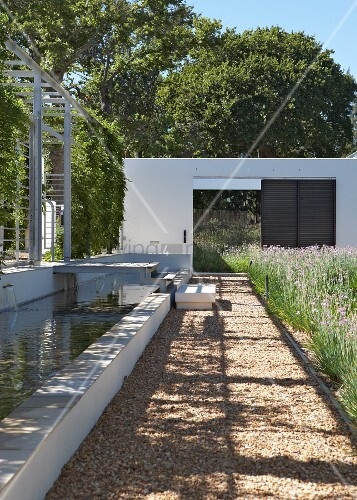 Contemporary landscaping - sunny gravel path edged by meadow and water feature