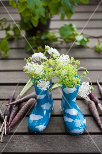 Wellies with scabious, ladies' mantle and carrots of the variety 'Anthonina'