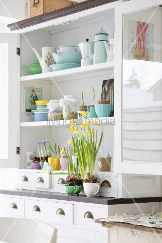 Sprouting jars, crockery and spring flowers on white dresser