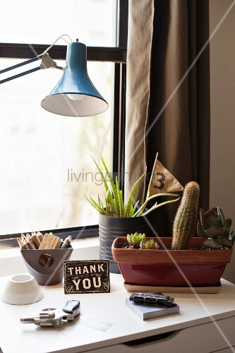 Cactus and succulents, 'Thank you' sign, mouth organ and revolver on windowsill