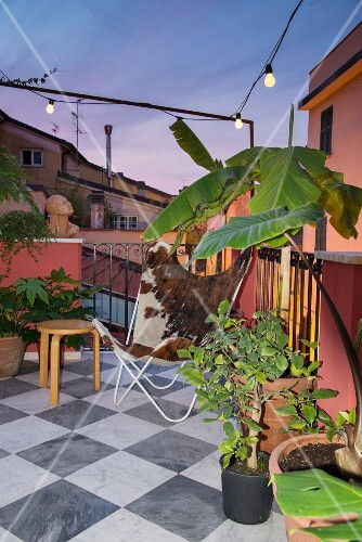 Butterfly armchair and potted plants on chequered marble floor tiles on terrace at twilight