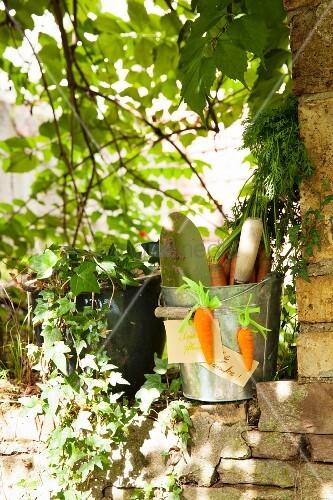 Metal bucket decorated with hand-made felt carrots in garden
