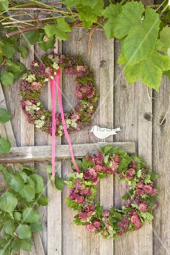 Wreaths of astrantia and vine leaves on board wall
