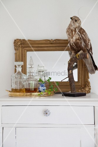 Stuffed bird and tray of glass carafes in front of mirror