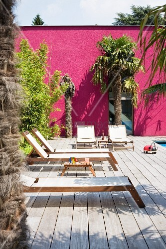 Sun loungers on sunny wooden deck and palm trees against magenta façade