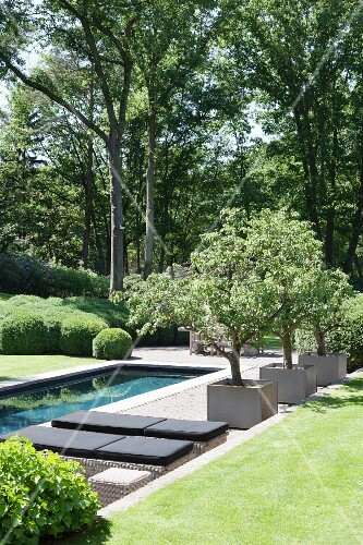 Loungers and trees next to pool in well-tended garden