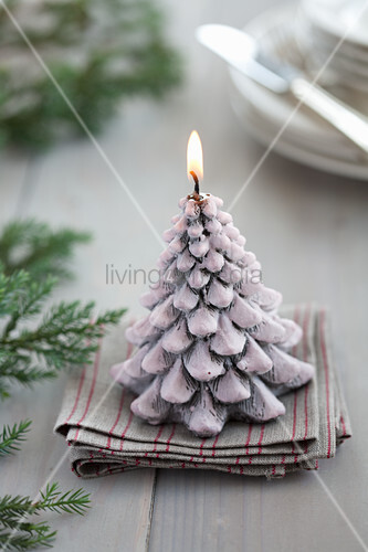 Christmas-tree candle and conifer twigs