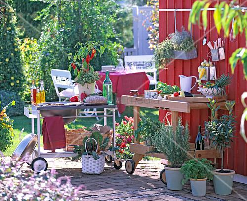 outdoor k che massivholz bild kaufen. Black Bedroom Furniture Sets. Home Design Ideas