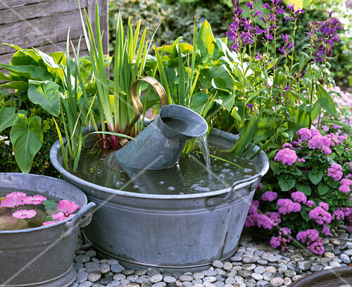 Small water feature, old zinc pans and zinc can