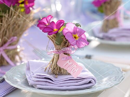 Tischdeko Mit Kissenprimeln Im Heumantel 6 6 Bild Kaufen