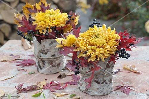 bl ten von chrysanthemum bild kaufen 12183431 living4media. Black Bedroom Furniture Sets. Home Design Ideas