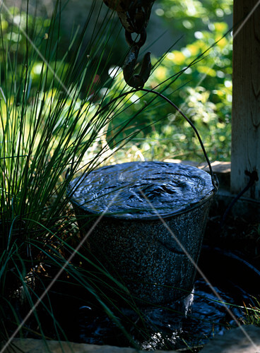 Hanging bucket of draw wells as water feature, Scirpus lacustris