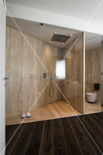 Partition and glass screens in designer bathroom