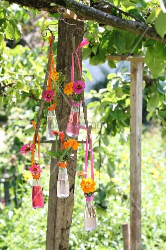 Arrangement of flowers in Campari bottles hung from metal frame