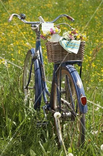 Sträusse aus Hahnenfuss, Kuckucksblume und Wiesenkerbel im Fahrradkorb