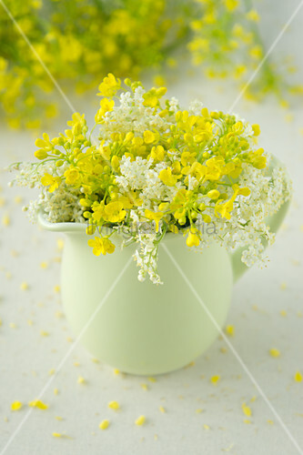 Posy of oilseed rape flowers and elderflowers