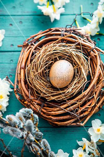Wachtelei im Nest mit Weidenkätzchen und weissen Narzissen