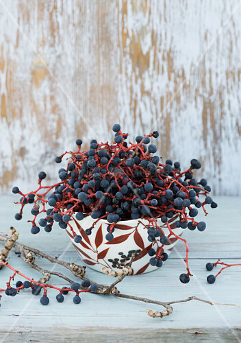 Virginia creeper berries in bowl painted with autumnal motif