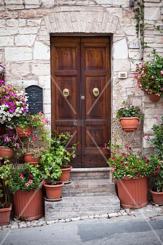 Hauseingang mit Holztür und verschiedenen Topfpflanzen (Italien)