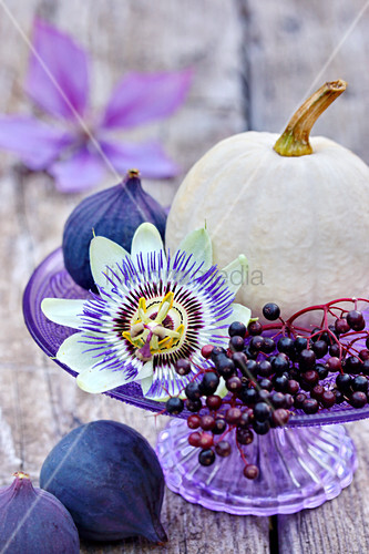 White pumpkins, passion flower, elderberries and figs