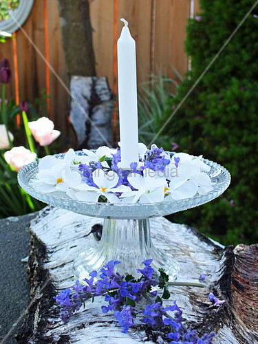 Candle, peppermint flowers and white violas on birch bark on cake stand