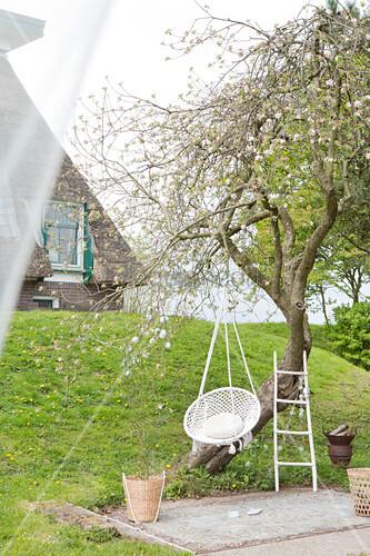 Weißer Hängesessel am Baum im Garten