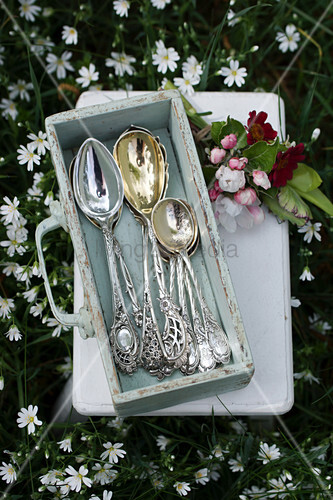 Antique silver spoons in drawer and posy of apple blossom