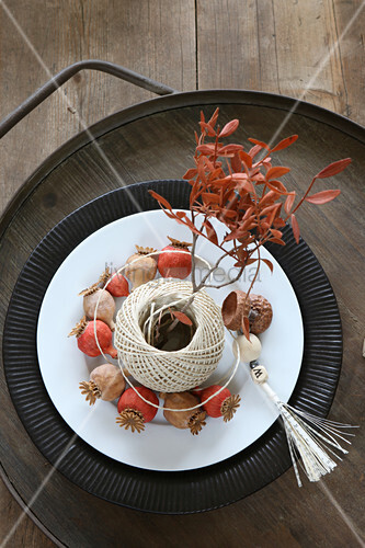 Angemalte Mohnkapseln und ein Garnknäuel als Vase für Blätterzweige