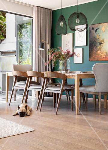 Hund liegt vor dem Tisch im Esszimmer mit grüner Wand