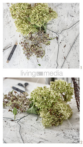 Wrapping a coat hanger in hydrangeas