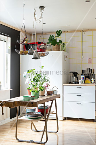 Plants on old workbench in eclectic kitchen