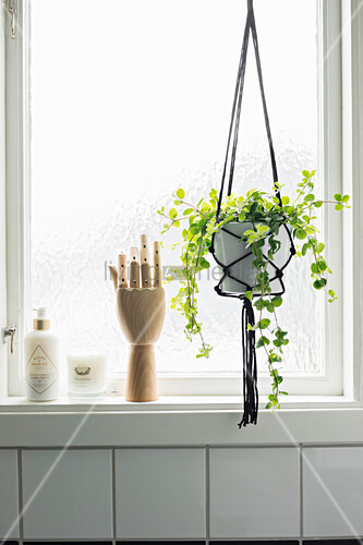 Wooden model of hand next to macrame plant holder in front of window
