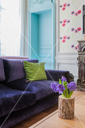 Hyacinths in log vase in front of purple velvet sofa in living room