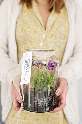 Frau hält Glas mit Stiefmütterchen als Dankes-Geschenk