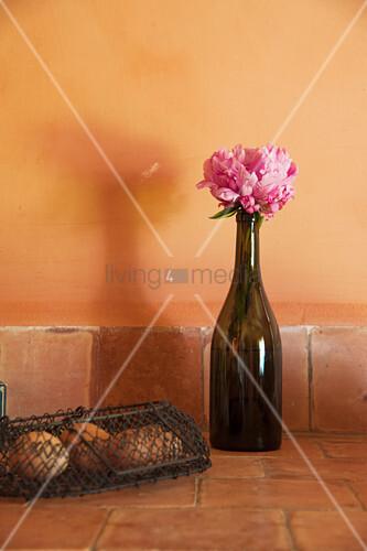 Peony in bottle on terracotta floor tiles
