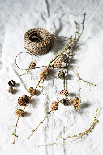 Larch twigs with cones and green shoots next to binding twine on linen cloth