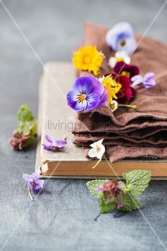 Edible flowers (dandelion, violet, viola, daisy, ground ivy)