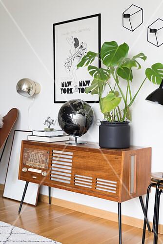 Bücher, Globus und Zimmerpflanze auf Retro Radio im Musikzimmer