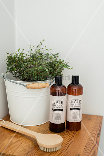 Hair products and body brush in front of plant in metal bucket