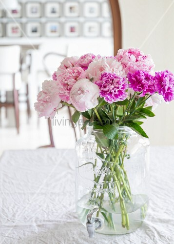 Peonies and carnations in glass jar