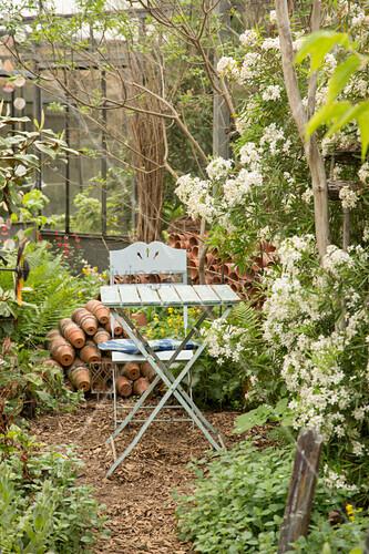 Klapptisch und -stuhl in alter Gärtnerei inmitten von weiss blühenden Blausternchen