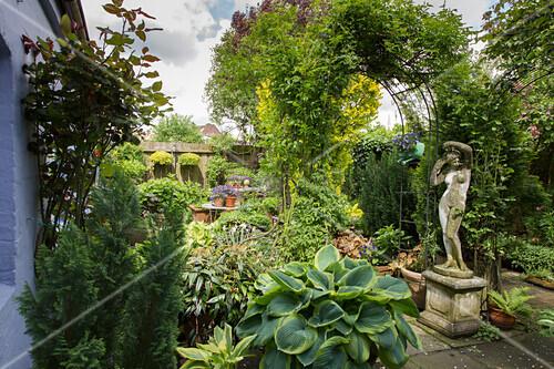 Topfgarten im Innenhof