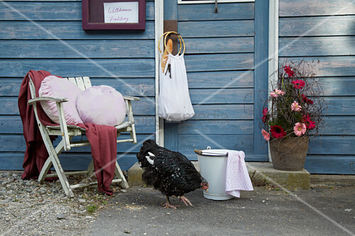 Cushions with hand-sewn covers on wooden chair, handmade cloth bag, arrangement of gerbera daisies, bucket and hen outside wooden house