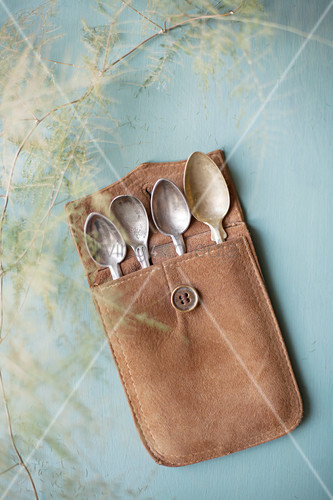 Old silver spoons in leather case