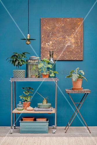 Rollwagen und Klapptisch mit Pflanzen vor blauer Wand