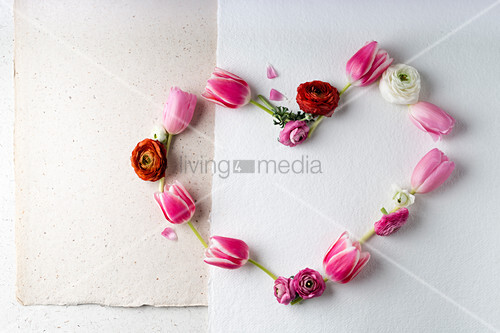 Tulpen und Ranunkeln herzförmig arrangiert