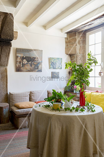 Arrangement of plants on round table in front of bench with cushions